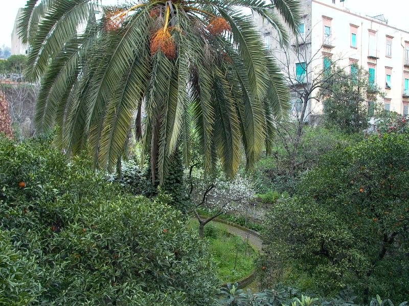 giardino-via-foria-1